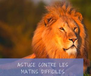 Read more about the article La chasse au lion ou comment gérer les matins difficiles