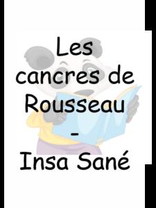 Les cancres de Rousseau – Insa Sané